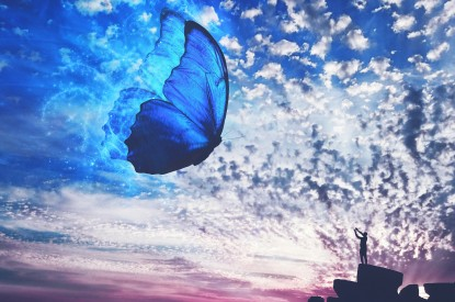 Butterfly, Dream, Beach, Sky, Butterfly, Dream, Beach, Sky, HD, 2K, 4K